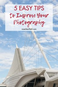 5 Easy Tips to Improve Your Photography