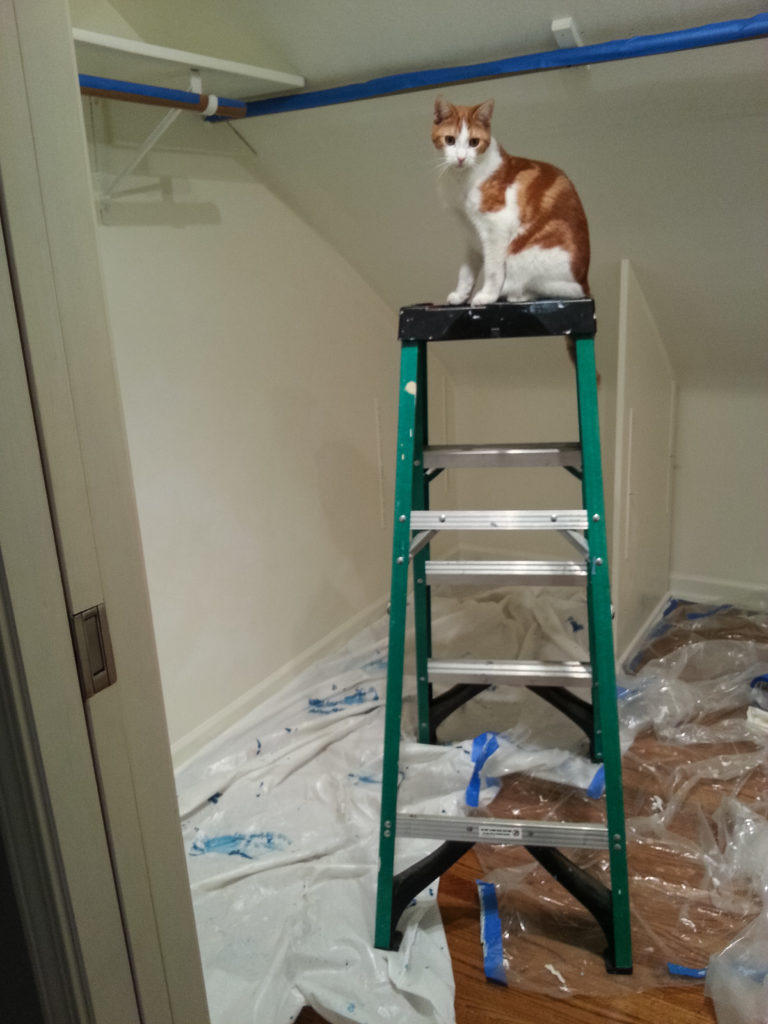 Hobbes on the ladder