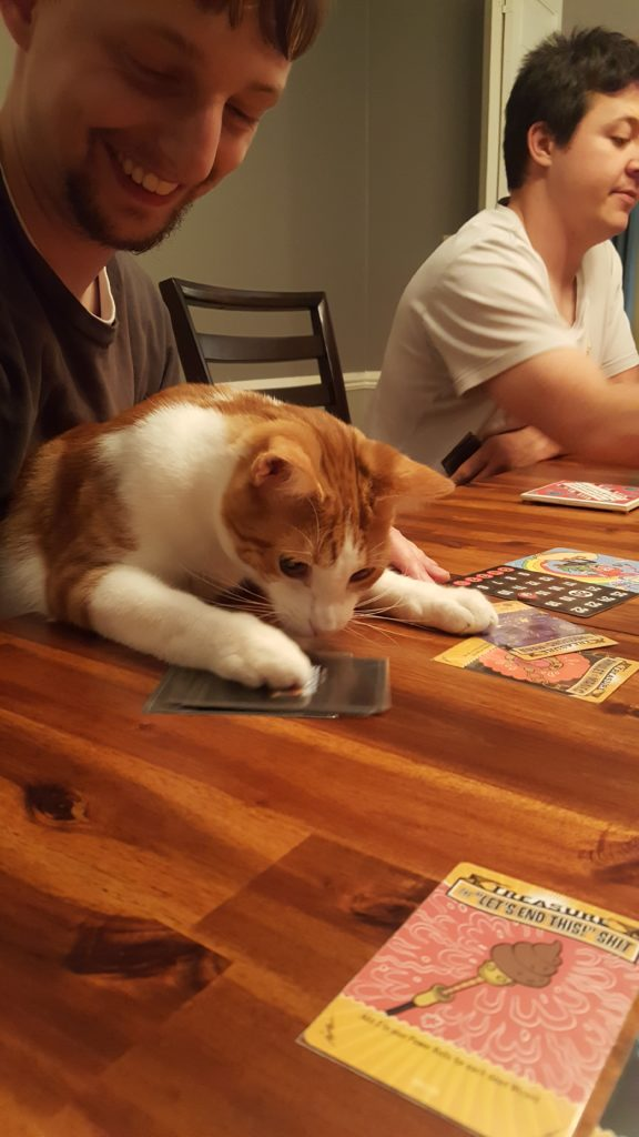 July 2016 Board Game Night with Hobbes