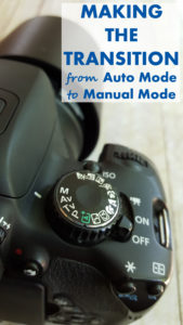 Making the Transition From Auto Mode to Manual Mode | https://www.roseclearfield.com