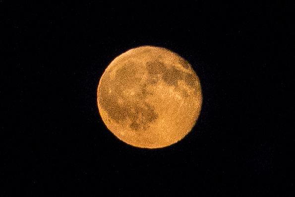 Moon Rise 7.20.16
