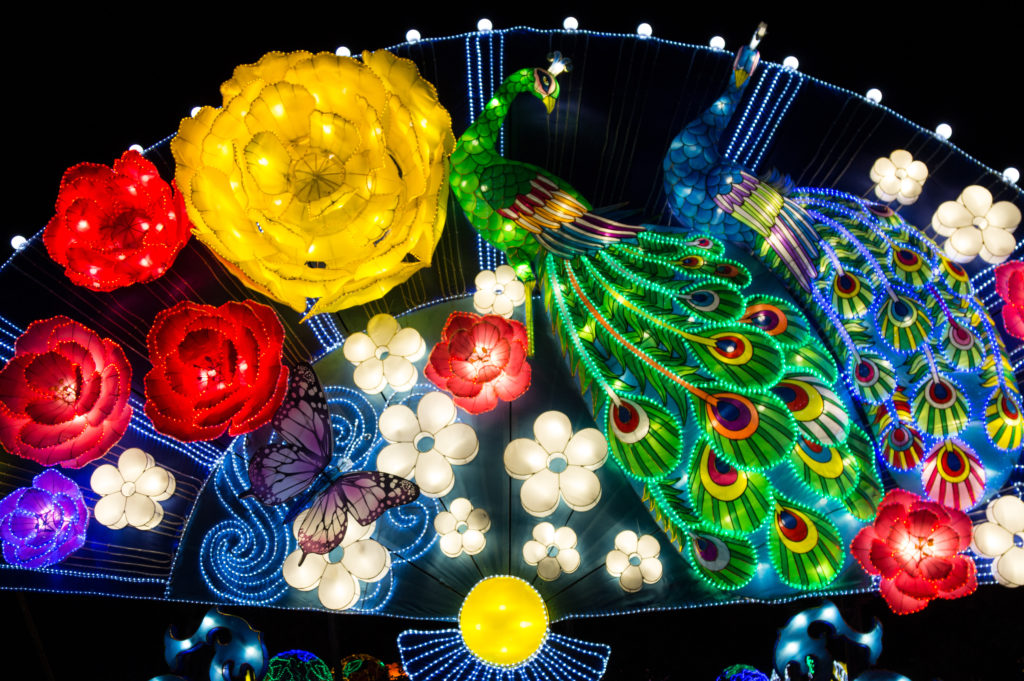 China Lights At The Boerner Botanical Gardens Rose Clearfield