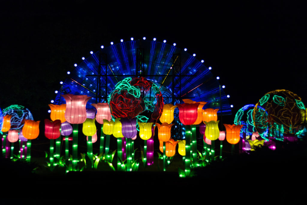 China Lights at the Boerner Botanical Gardens | https://www.roseclearfield.com