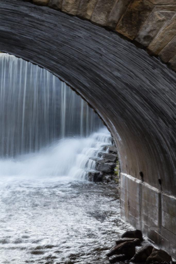 Grant Park Waterfall   https://www.roseclearfield.com