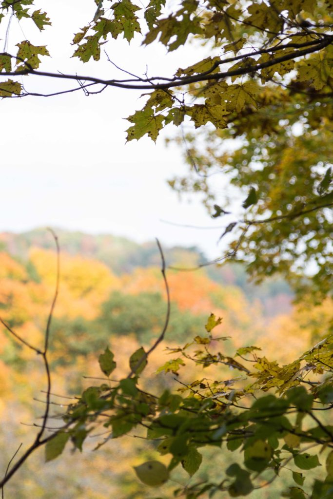Holy Hill in autumn, gorgeous colors!   https://www.roseclearfield.com