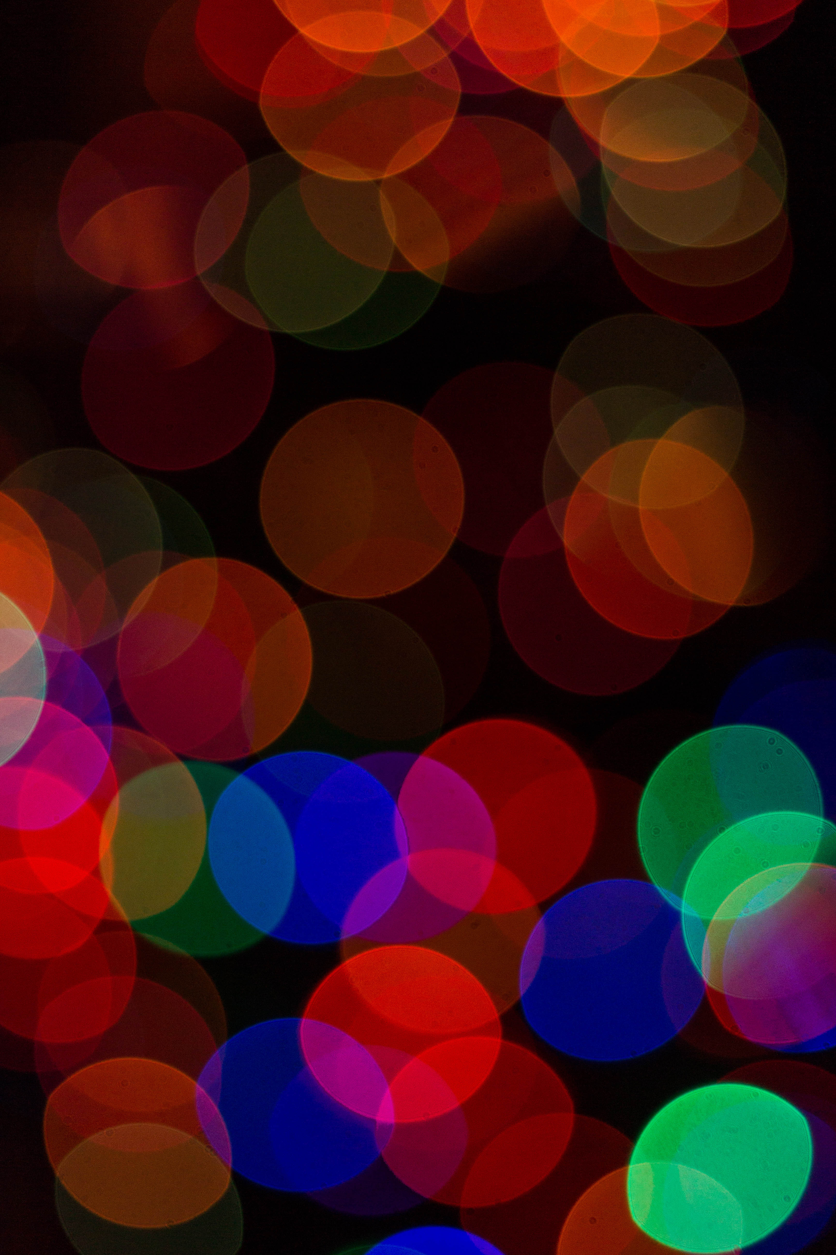 Christmas Lights Bokeh Play, 2016 Holidays | https://www.roseclearfield.com