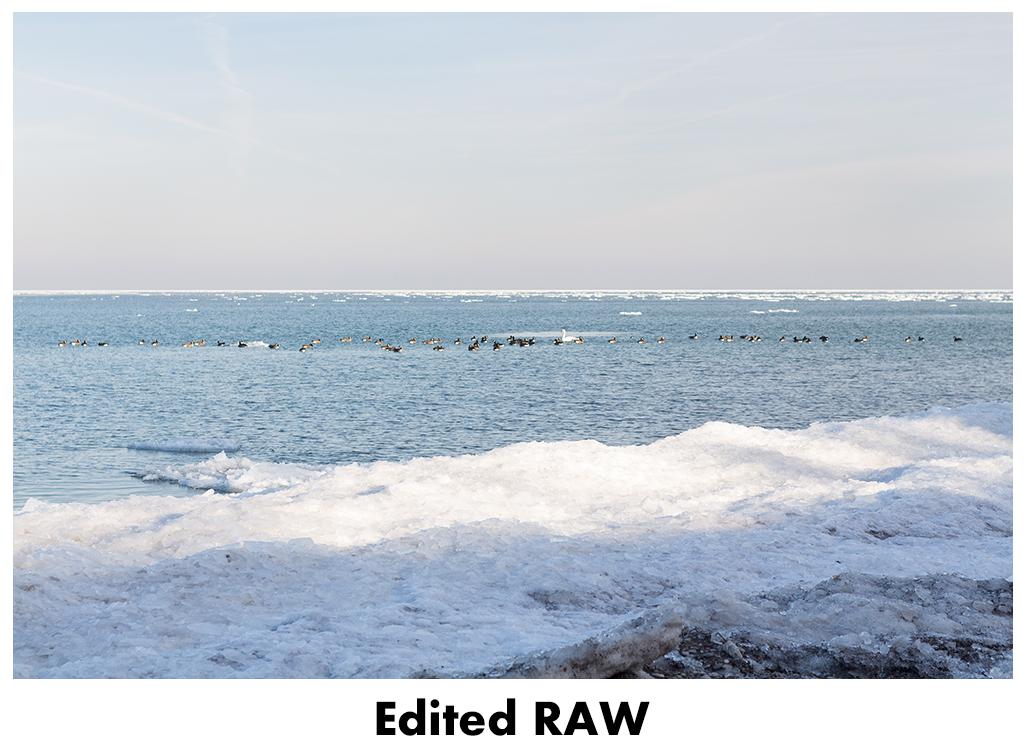 JPEG vs RAW - Edited RAW | https://www.roseclearfield.com