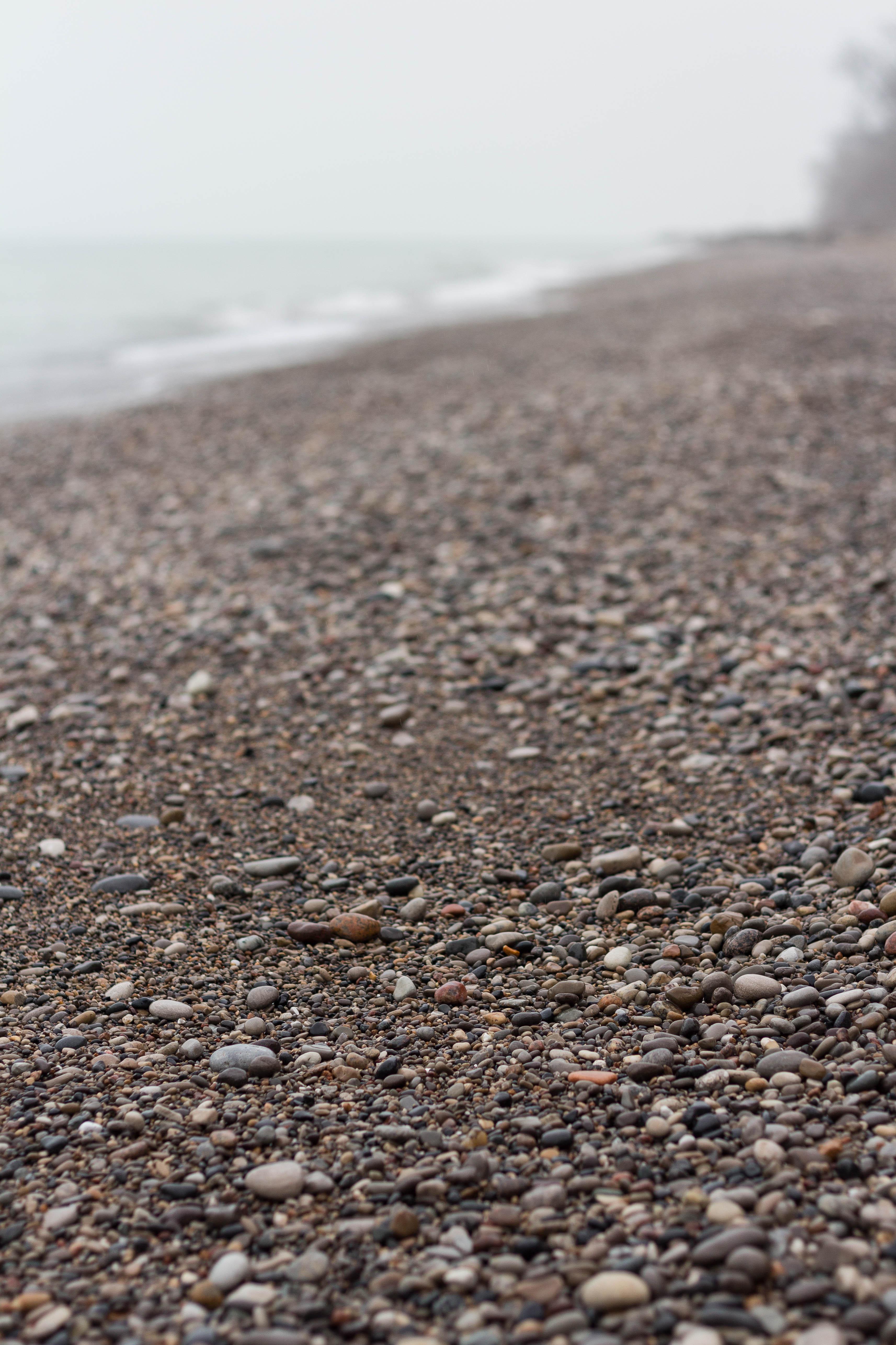 Foggy Winter Beach Vibes   https://www.roseclearfield.com