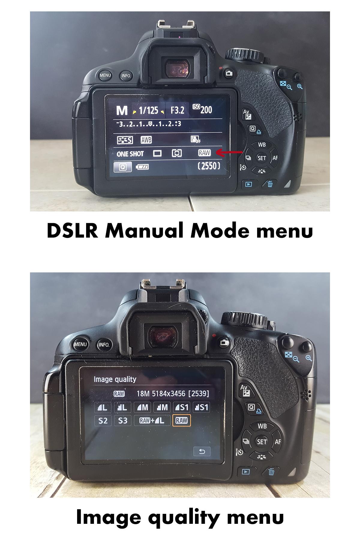 Shooting RAW DSLR Menus | https://www.roseclearfield.com