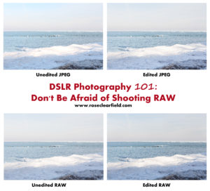 DSLR Photography 101: Don't Be Afraid of Shooting RAW   https://www.roseclearfield.com