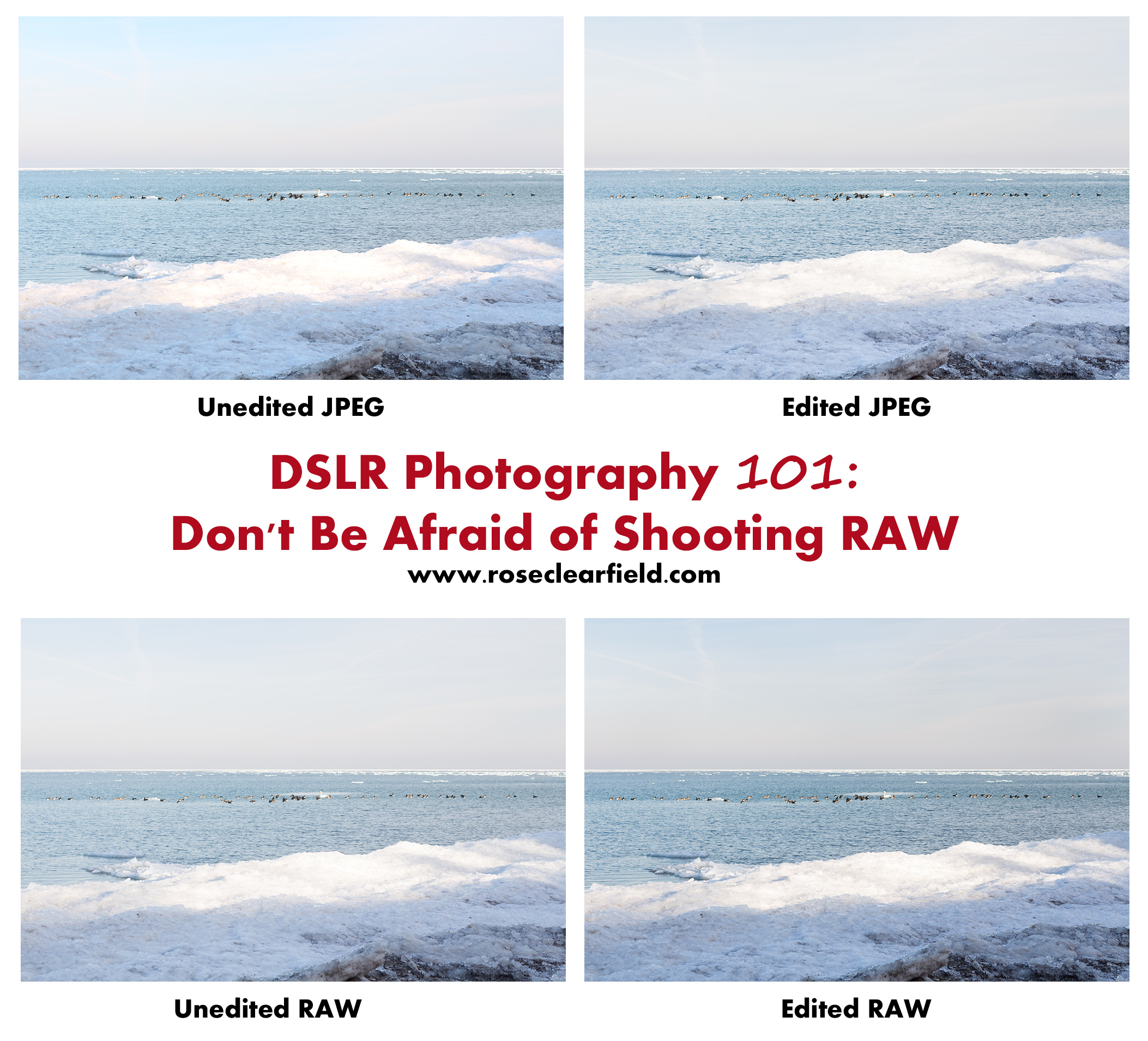 DSLR Photography 101: Don't Be Afraid of Shooting RAW | https://www.roseclearfield.com
