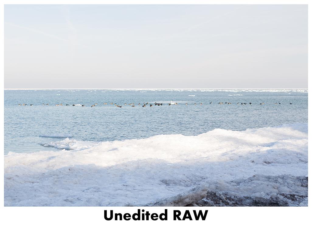 JPEG vs RAW - Unedited RAW | https://www.roseclearfield.com