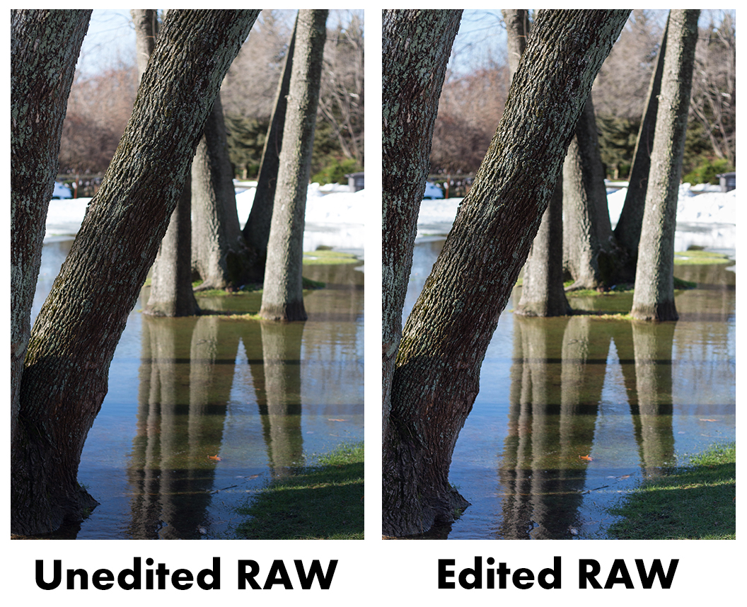 Unedited Vs Edited RAW | https://www.roseclearfield.com