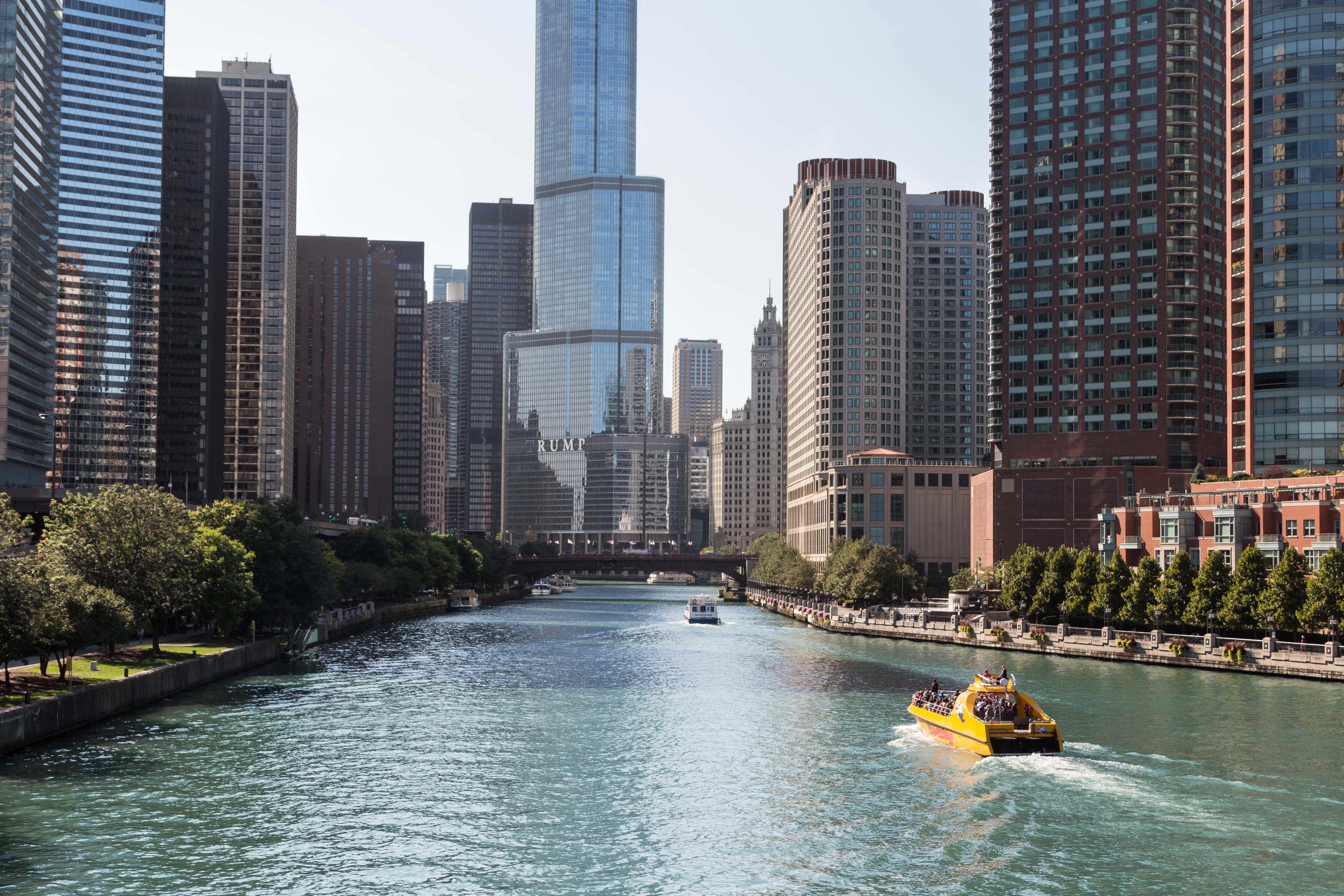 Chicago September 2015 | https://www.roseclearfield.com
