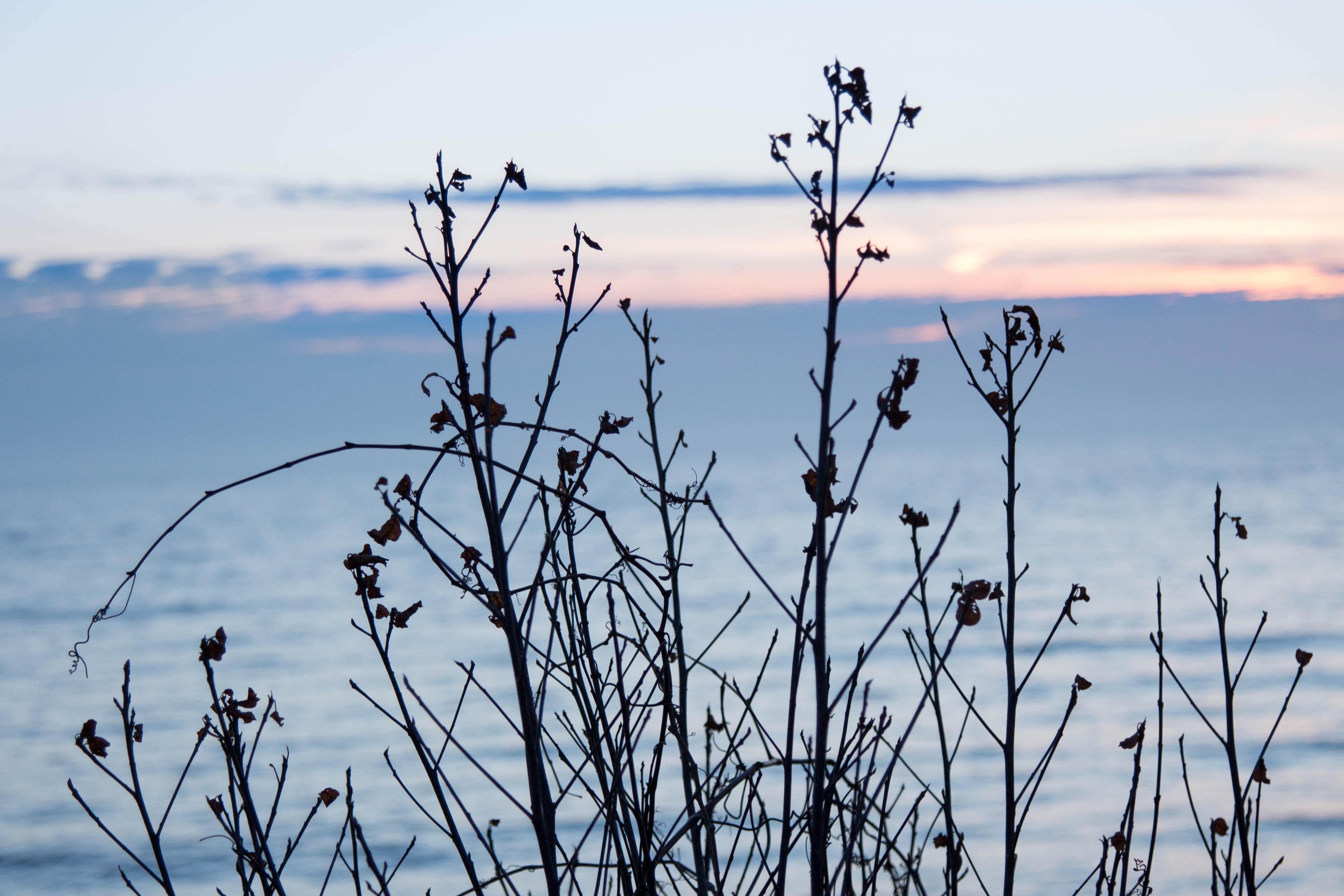 Sunrise over Lake Michigan February 2017 | https://www.roseclearfield.com