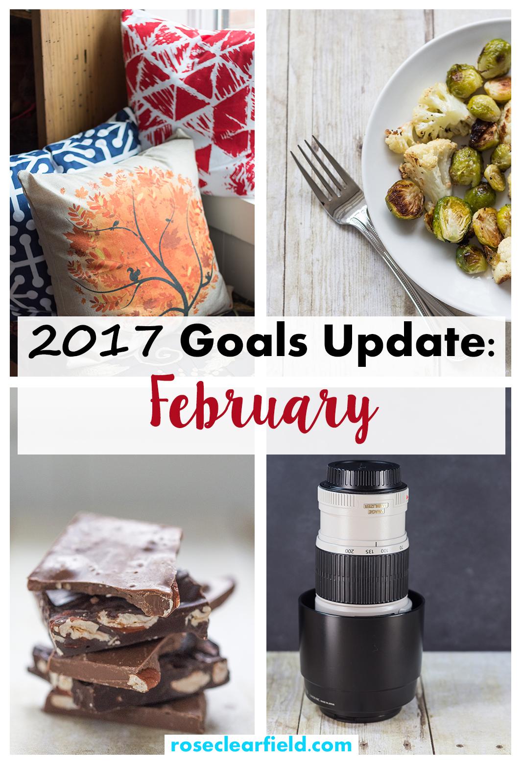 2017 Goals Update: February | https://www.roseclearfield.com
