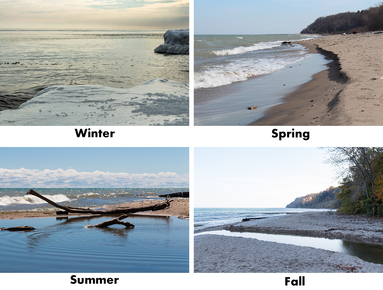 Beach in Four Seasons   https://www.roseclearfield.com