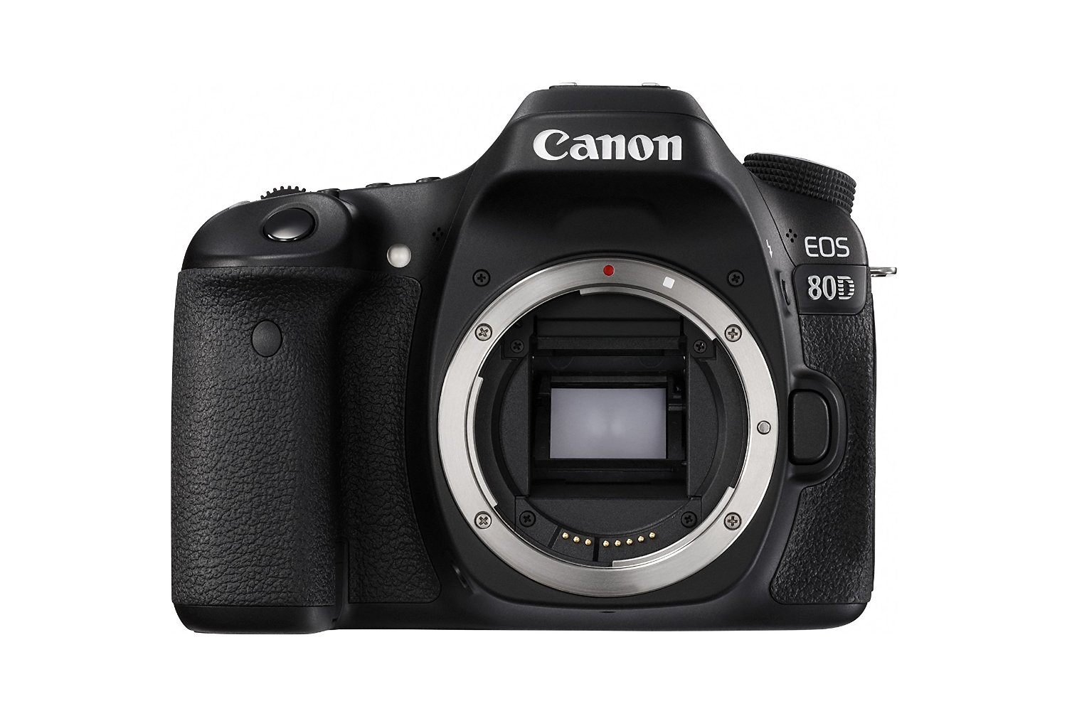Canon 80D via Amazon | https://www.roseclearfield.com