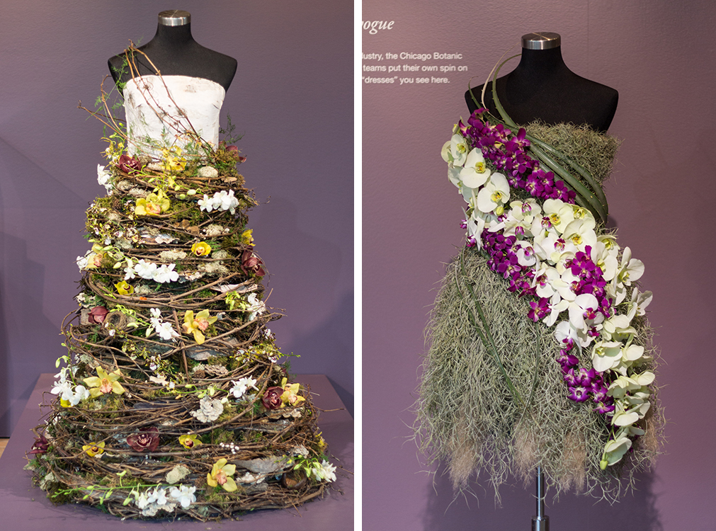 Orchids in Vogue Chicago Botanic Gardens Outfits | https://www.roseclearfield.com