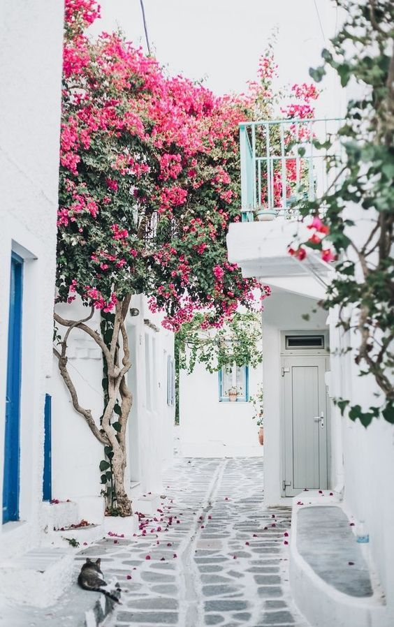 Spring Inspiration 8 | https://www.roseclearfield.com