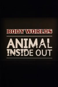 Body Worlds Animal Inside Out, Milwaukee County Zoo, May 6-September 4, 2017 | https://www.roseclearfield.com