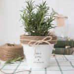 Last Minute DIY Mother's Day Gift Ideas - DIY Painted Terracotta Pot via The Beauty Dojo | https://www.roseclearfield.com