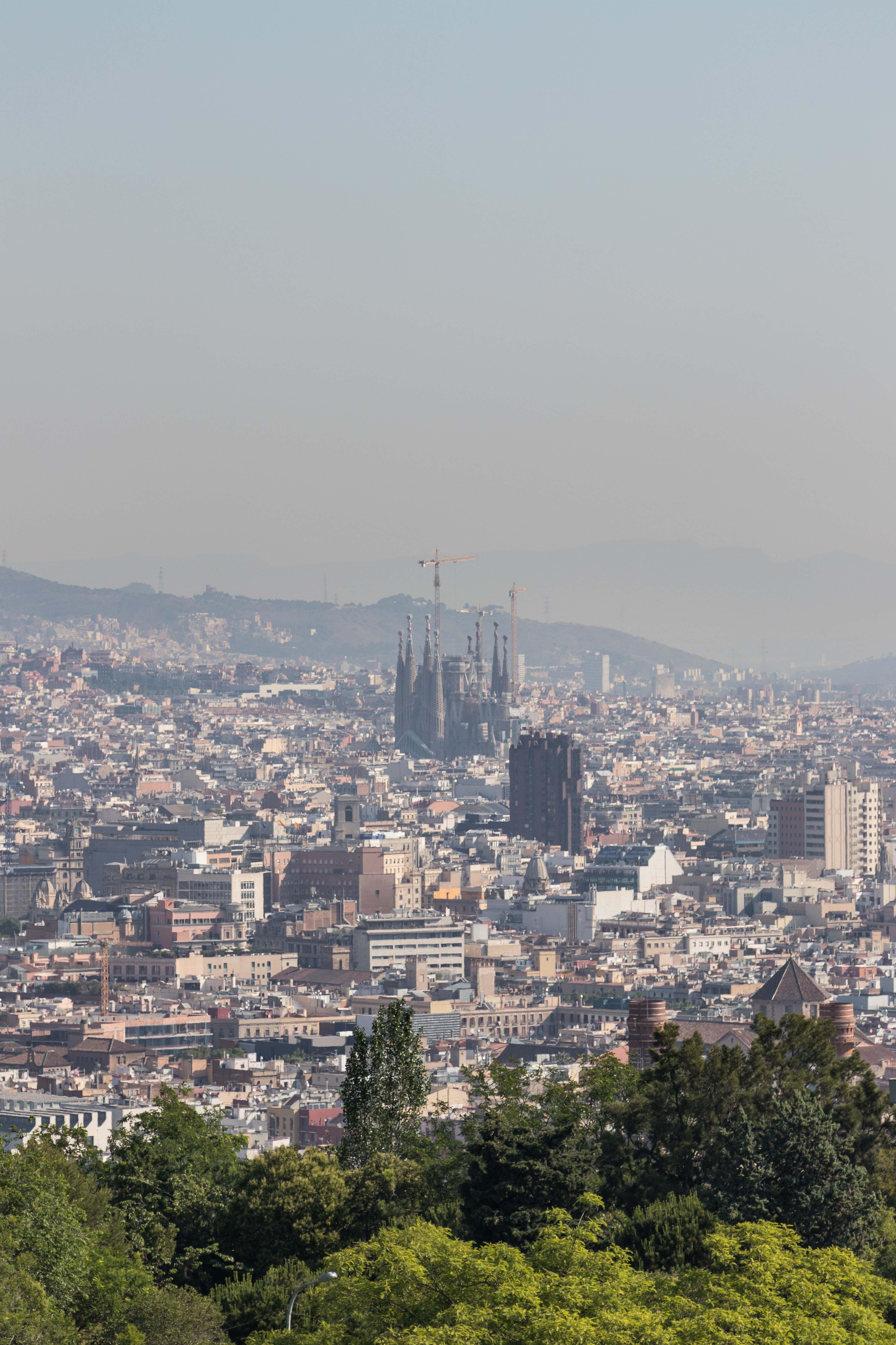 Barcelona Skyline in the Morning | https://www.roseclearfield.com