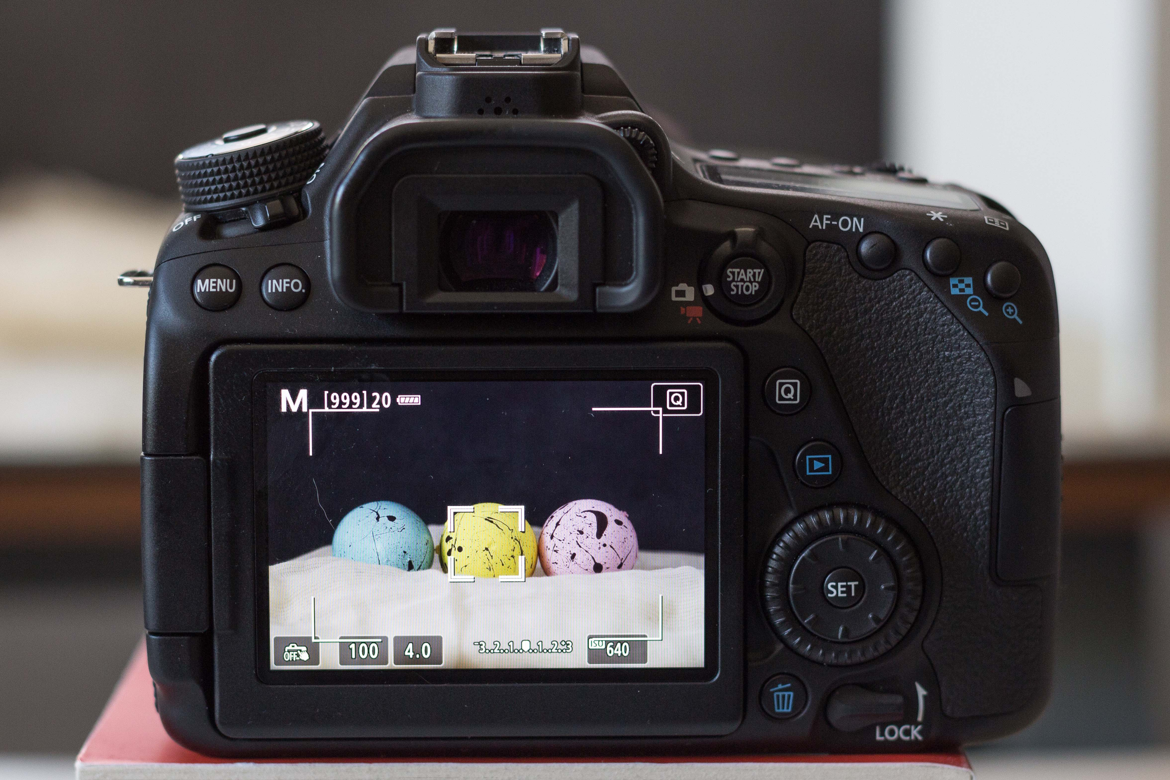 Canon 80D Live Screen Mode | https://www.roseclearfield.com