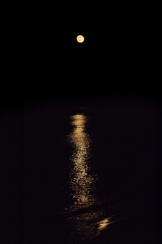 Moon Rise 5.11.17 | https://www.roseclearfield.com