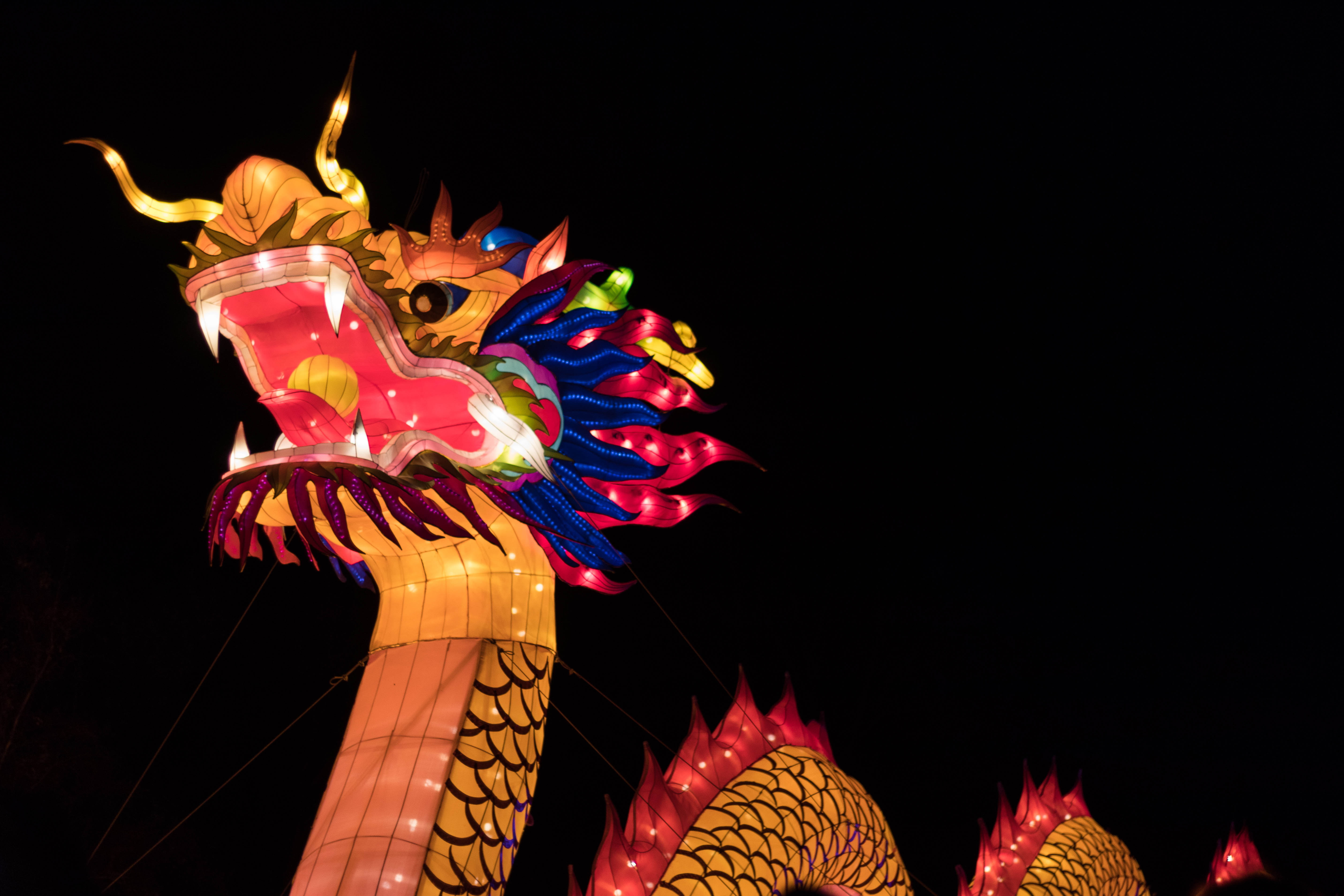 China Lights 2017, Milwaukee, WI | https://www.roseclearfield.com
