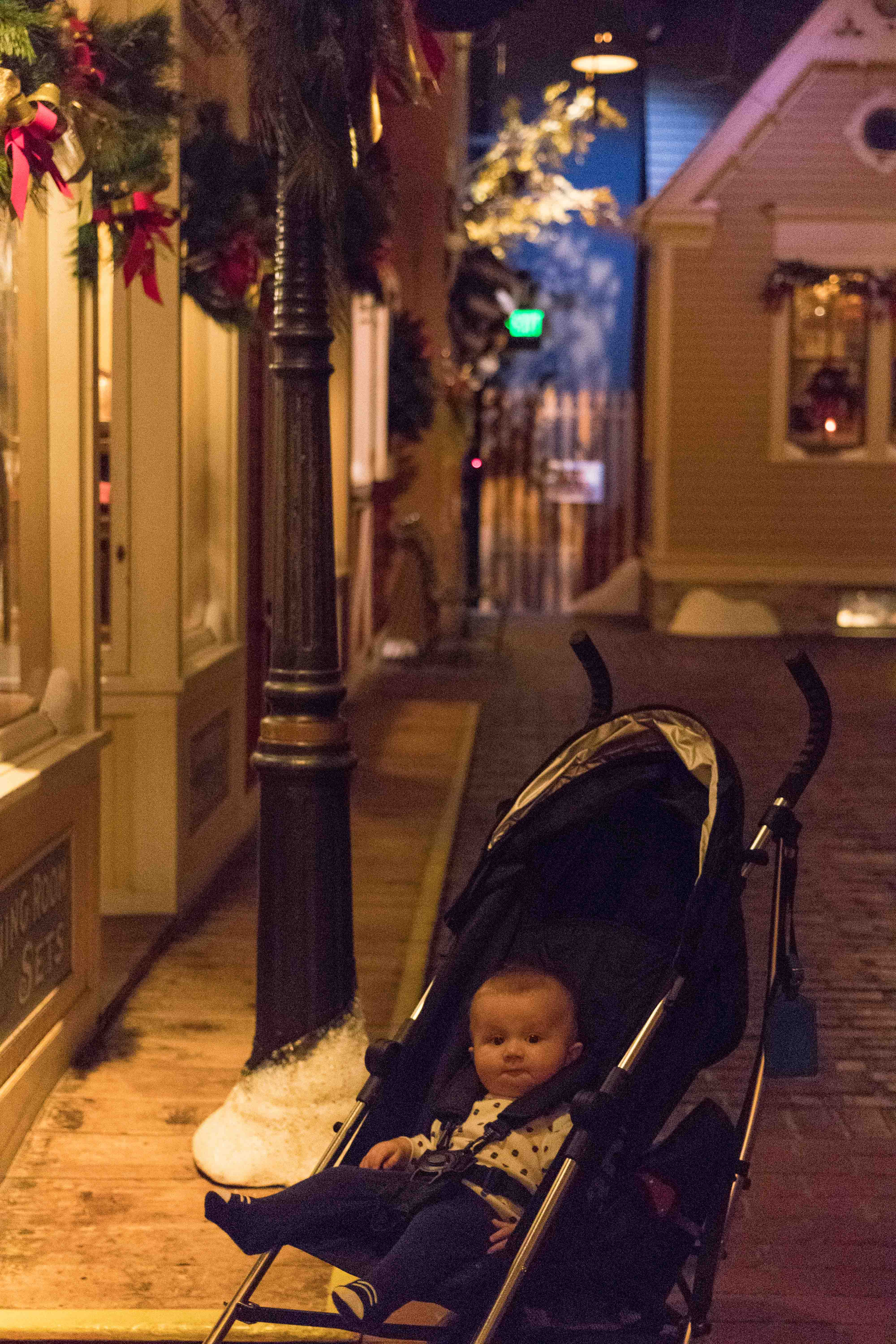 Deck the Streets of Old Milwaukee at the Milwaukee Public Museum | https://www.roseclearfield.com