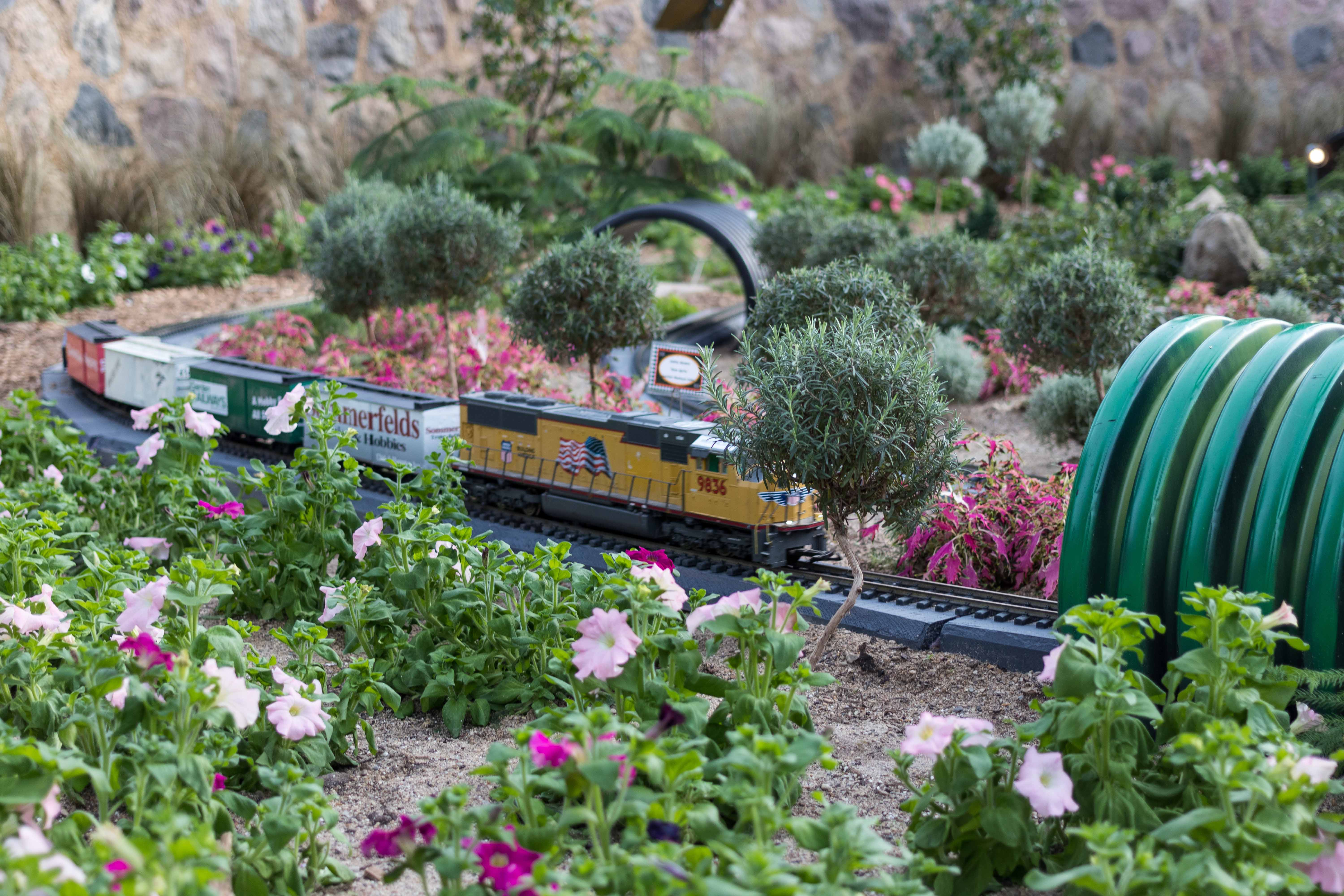 Railroad to Wonderland Garden Train Show at the Domes | https://www.roseclearfield.com