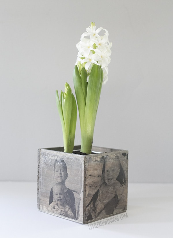 Unique Mother's Day Photo Gift Ideas - DIY Mother's Day Photo Planter via Little Red Window | https://www.roseclearfield.com
