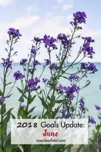 2018 Goals Update: June | https://www.roseclearfield.com