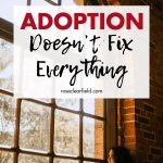 Adoption Doesn't Fix Everything