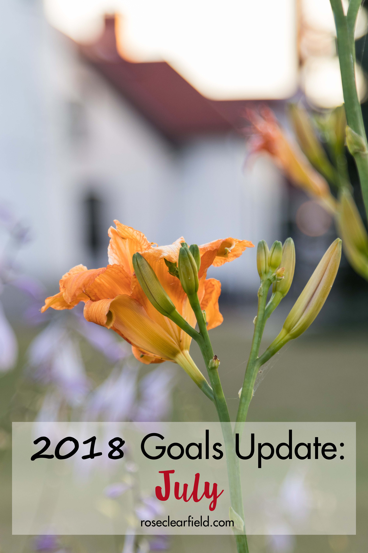 2018 Goals Update: July | https://www.roseclearfield.com