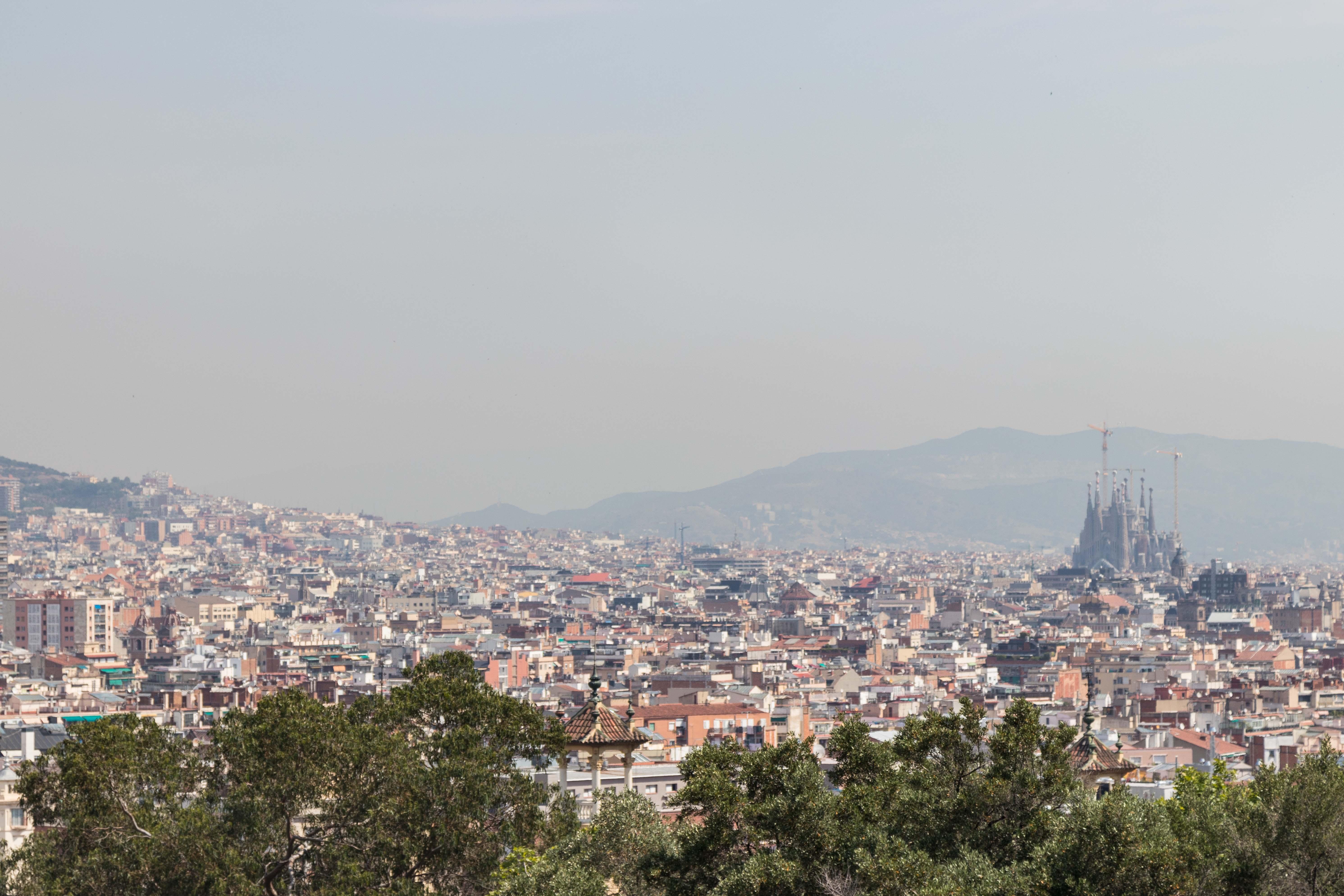 Barcelona Skyline   https://www.roseclearfield.com