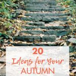 20 Ideas for Your Autumn Photography