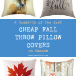 A Round Up of the Best Cheap Fall Throw Pillow Covers on Amazon