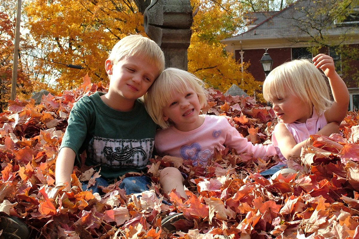 20 Creative Fall Photography Ideas - Family Fall Photos in the Leaves by Ned Horton via FreeImages | https://www.roseclearfield.com