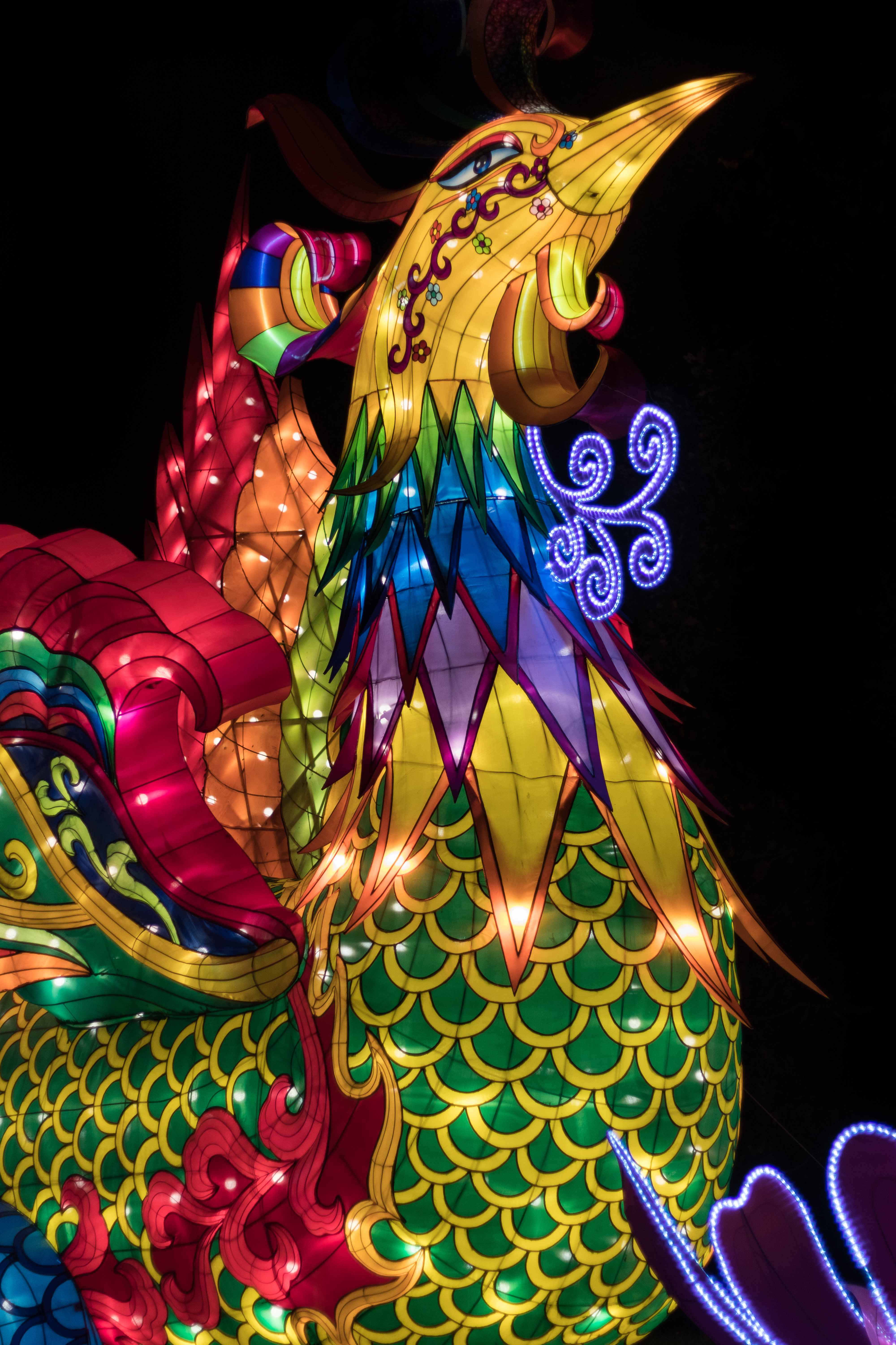 China Lights 2018, Boerner Botanical Gardens, Wisconsin | https://www.roseclearfield.com