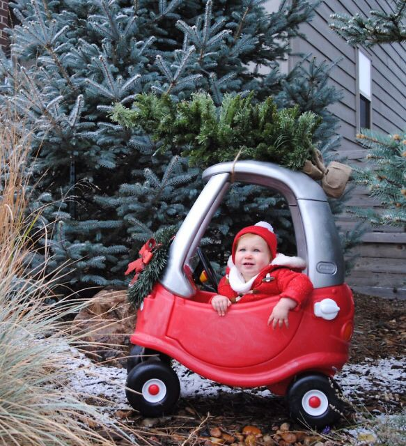 20 Creative Holiday Photo Ideas - Cozy Coupe with Christmas Tree via Sass and Cecile | https://www.roseclearfield.com
