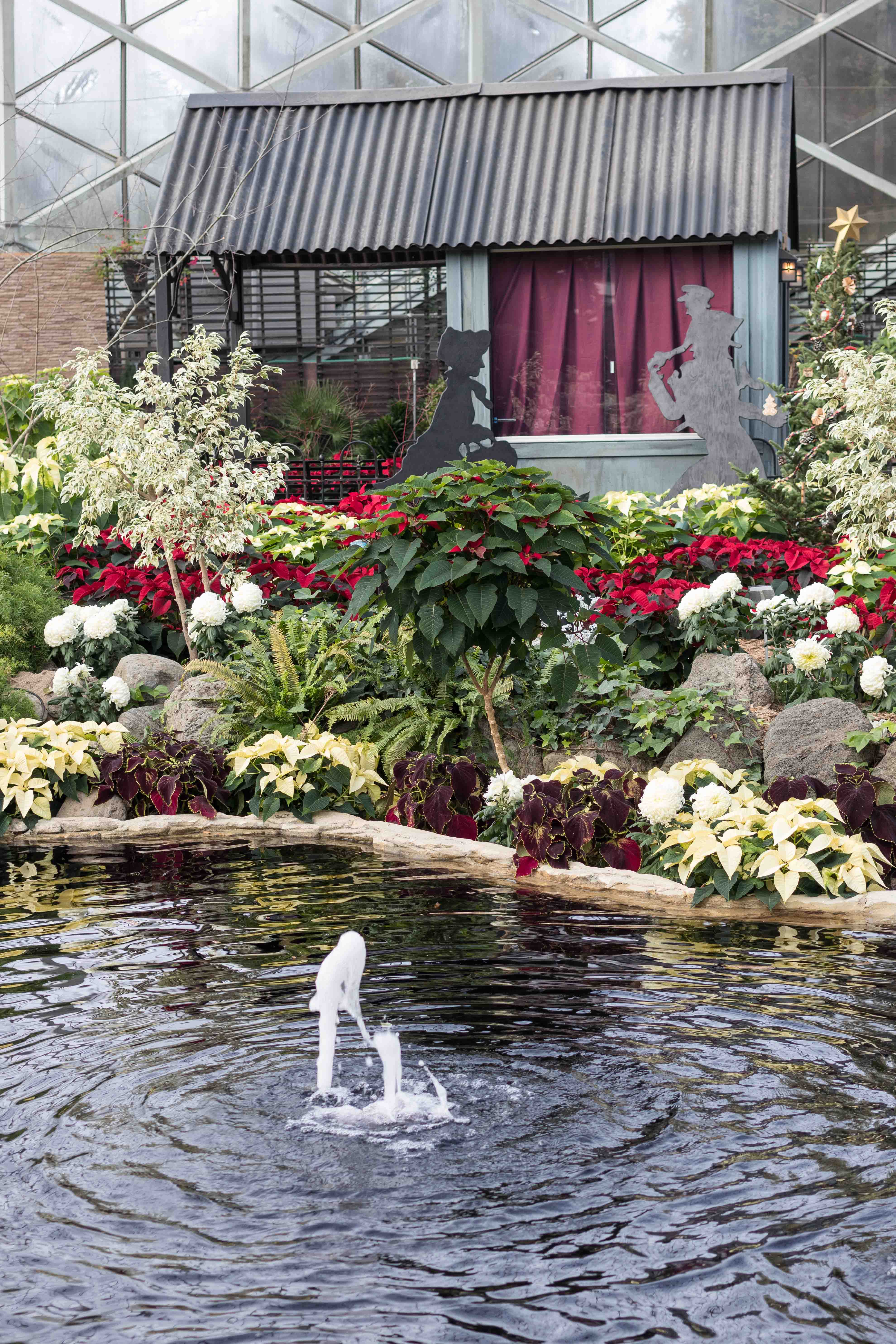 Scrooge Holiday Floral Show at the Mitchell Park Domes, Milwaukee, WI   https://www.roseclearfield.com