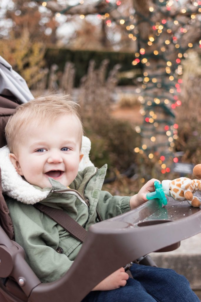 Tommy at the Chicago Botanic Gardens for Christmas 2018 | https://www.roseclearfield.com