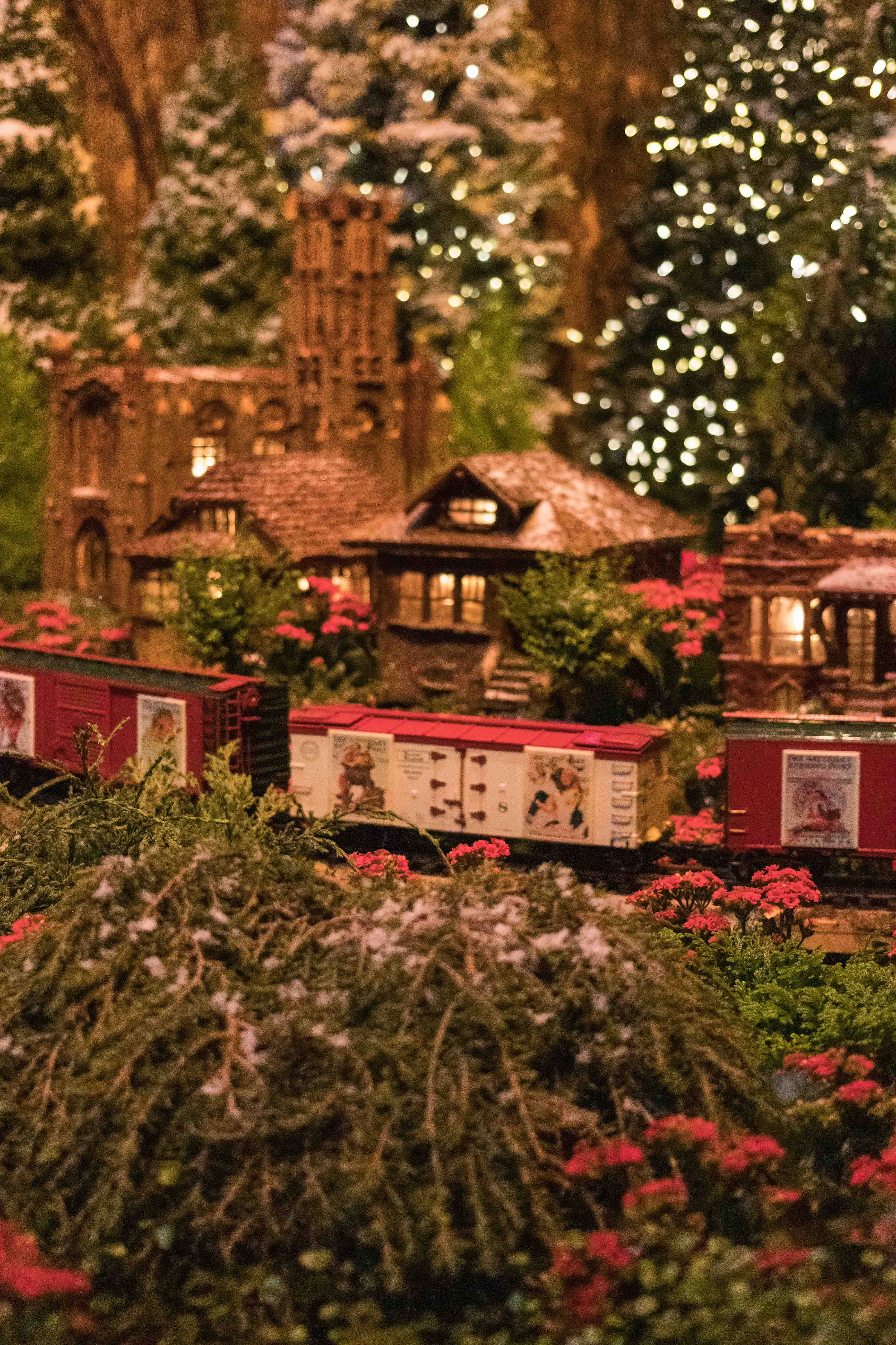 Wonderland Express at the Chicago Botanic Garden | https://www.roseclearfield.com
