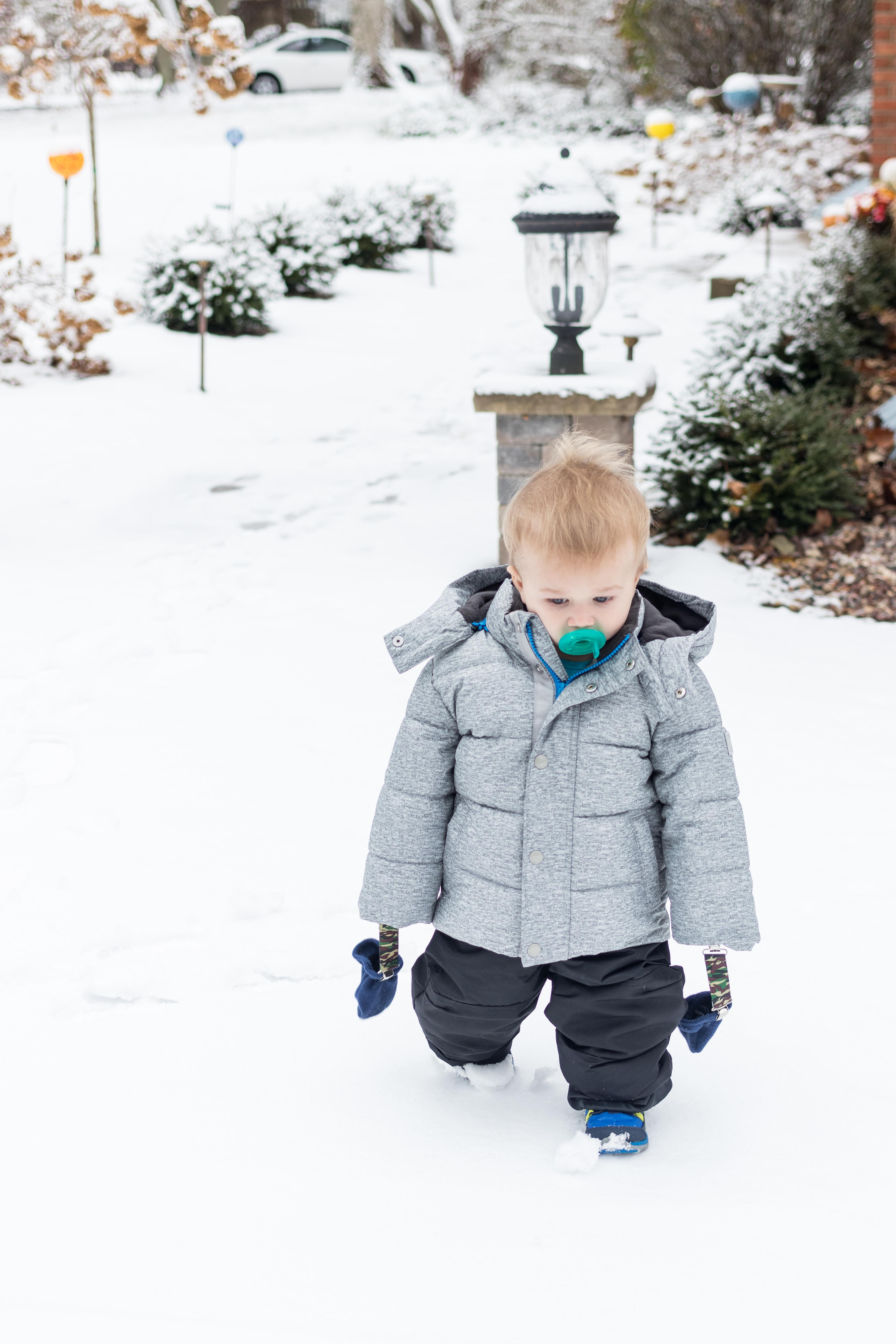 Tommy in the Snow Mid-November 2018 | https://www.roseclearfield.com