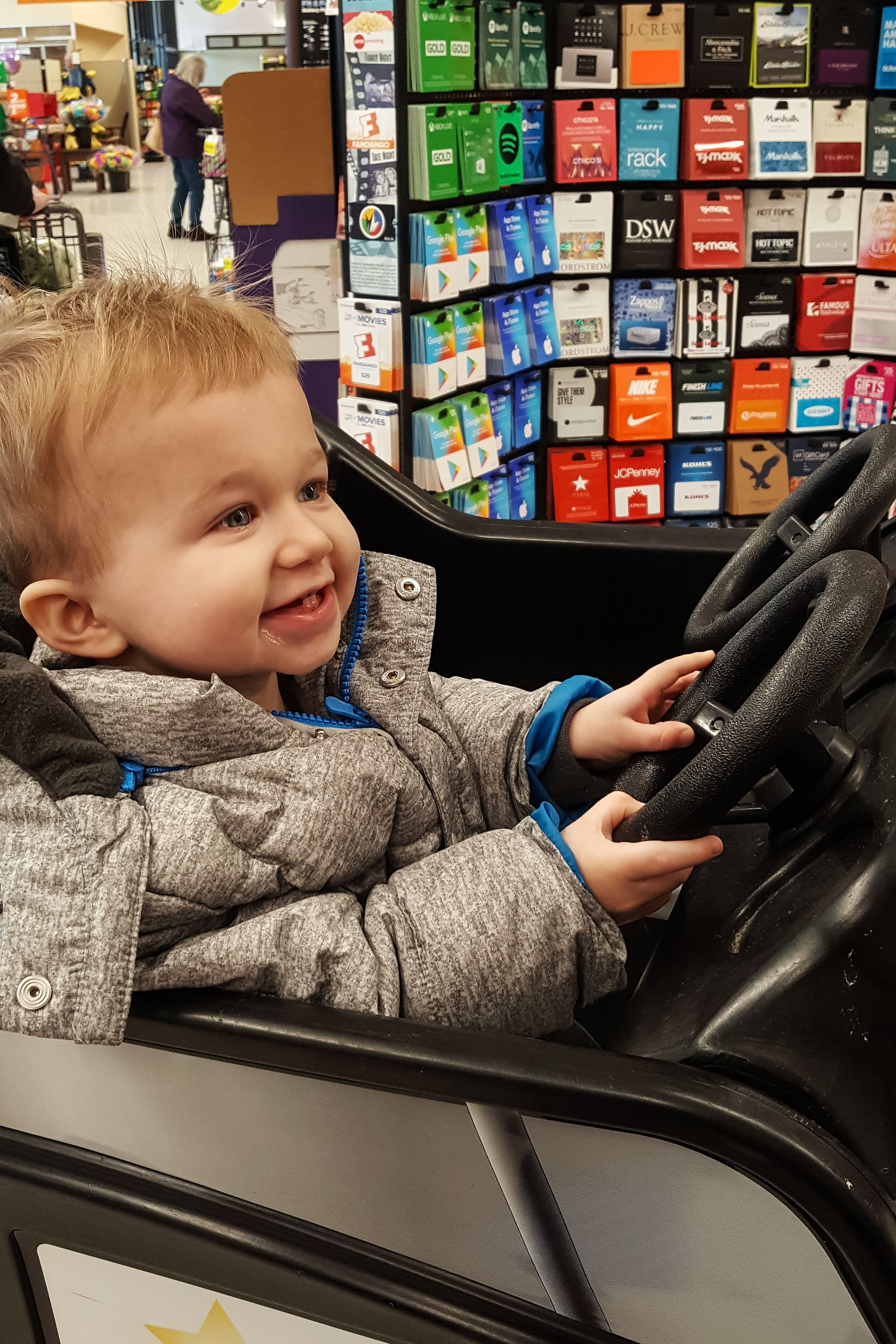 Tommy in the Vehicle Shopping Cart February 2019 | https://www.roseclearfield.com