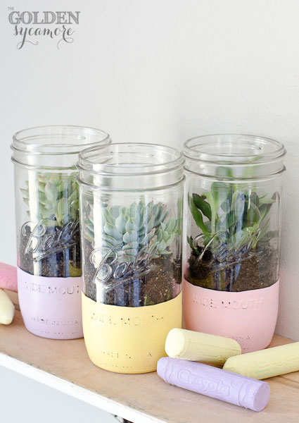 Painted pastel succulent mason jar plants are a quick spring home decor project. via The Golden Sycamore | https://www.roseclearfield.com