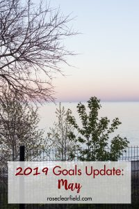 2019 Goals Update: May | https://www.roseclearfield.com