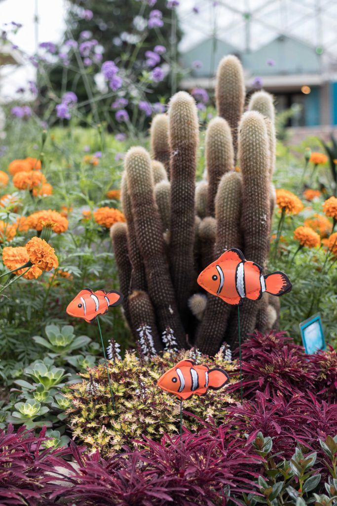 Under the Sea Summer Floral Show at the Mitchell Park Domes #MitchellParkDomes #MilwaukeeWI #floralshow #UndertheSea | https://www.roseclearfield.com
